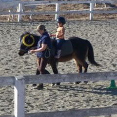 therapeutic riding small